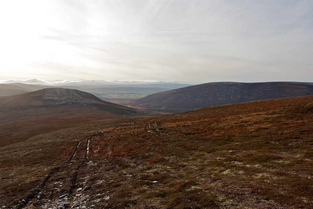 Cook's Cairn Track
