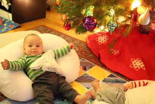 Elliott Wide Awake Under Christmas Tree