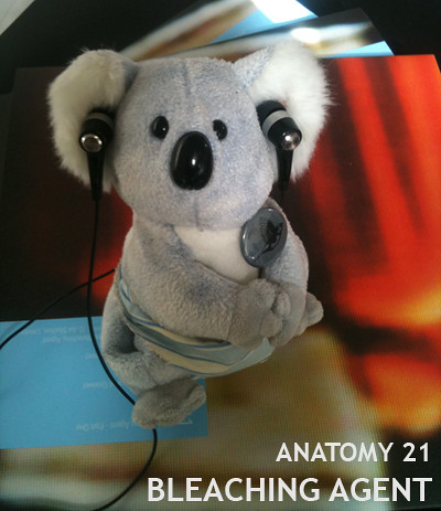 bleaching agent - anatomy 21