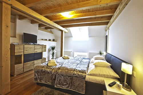 Apartment Attic Olivova in the Wenceslas Square, Prague