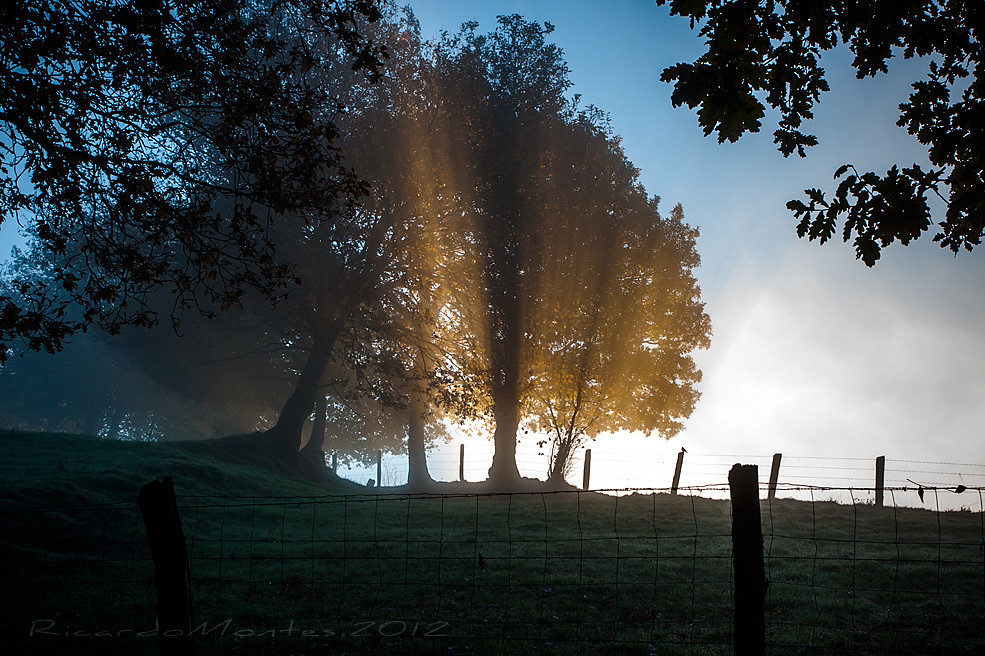 luces de otoño1