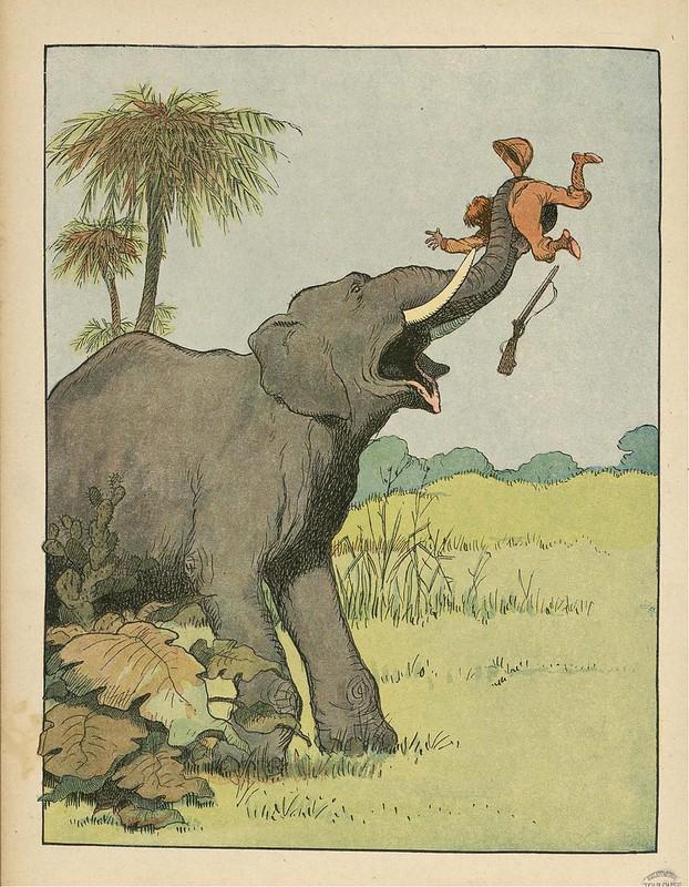 Pachyderms (L'Elephant) - Le Buffon Choisi