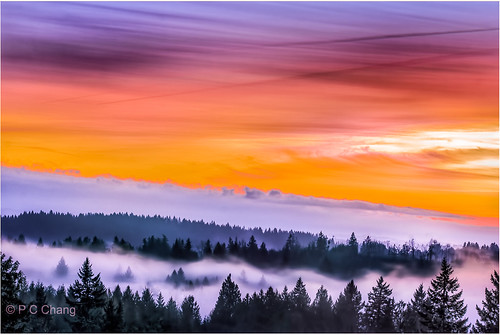 pink blue sunset red sky mist mountain tree green fall nature yellow fog clouds forest canon garden season landscape gold woods purple evergreen valley cascade cloudscape goldenhour raincloud alpenglow cascademountains pcchang rememberthatmomentlevel1 rememberthatmomentlevel2 dougfirforest
