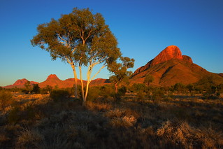 Haasts Bluff at sunrise