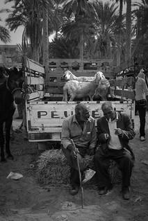 making business in tunesia