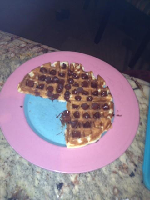 chocolate chip waffle