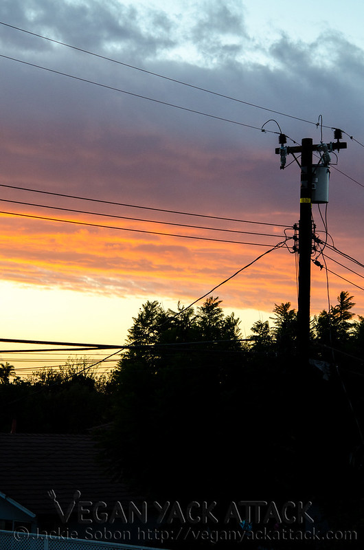 California sunset with power lines