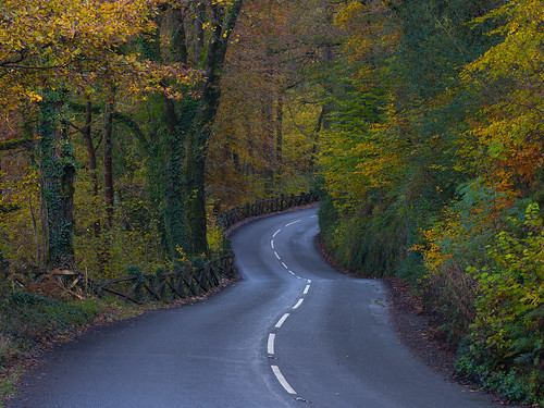 Autumn Road-Dartmoor