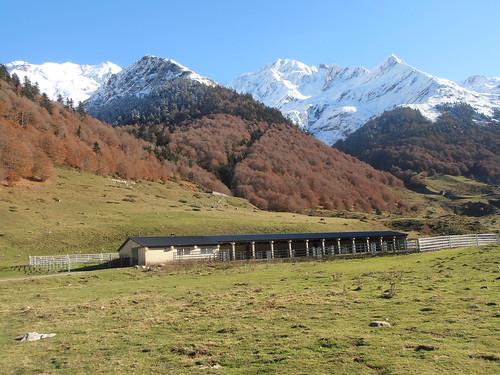 Pont de Camps 163