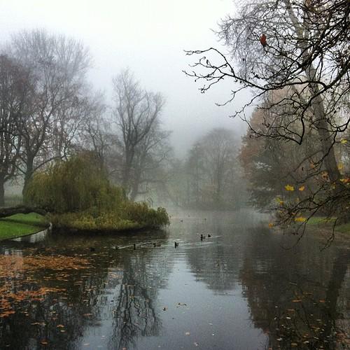 Once more Vondelpark #wander
