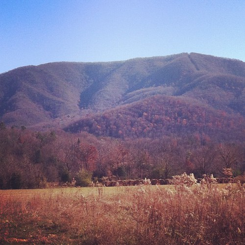 Take the parkway, the shopping, and all the tourist crap. This...give me this. #mayialwaysbeinawe #smokymountains
