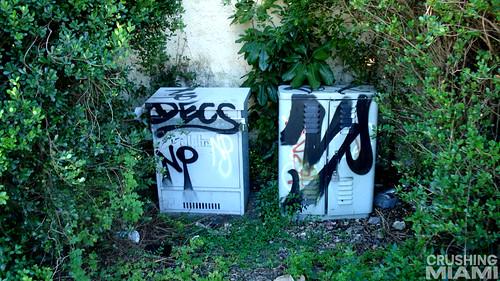Dex NP - Miami, FL 2012