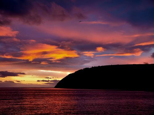 sunrise scotland highlands cromarty sutor gloaming