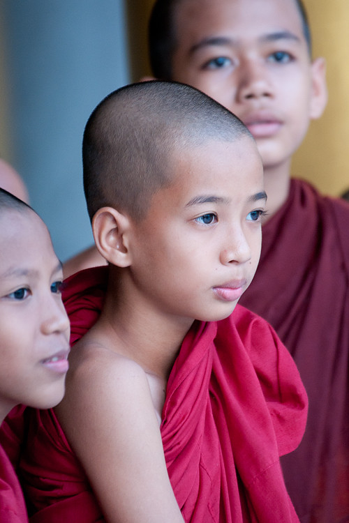 The Young Monks, Shwedagon, Yangon, Myanmar (Burma)
