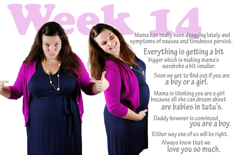 111612_maternity_14w