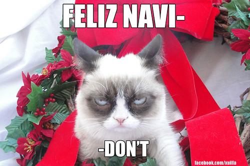 GrumpyCat Feliz Navi-Don't