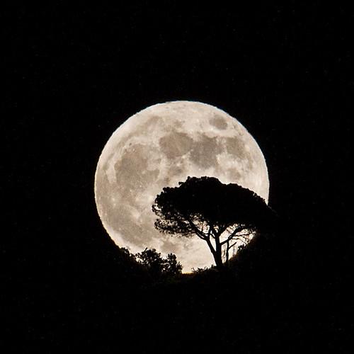 Sombra y luz... de Luna by oSKaR MG [ www.fotosyfotos.es ]