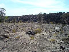 lava_wall