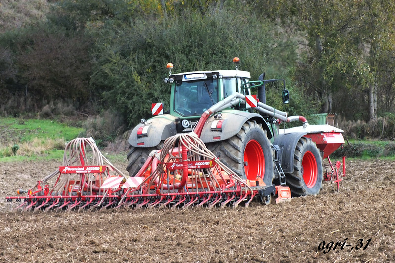 wheat seeding