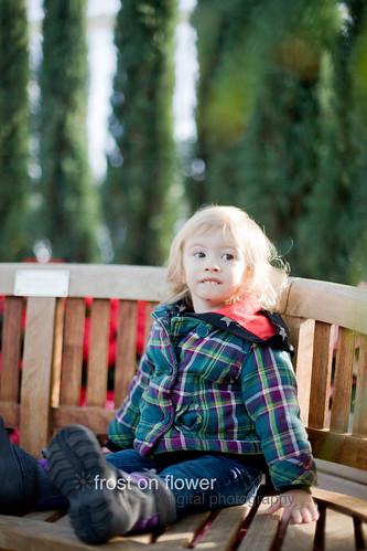 20121211-advent-day12-68.jpg