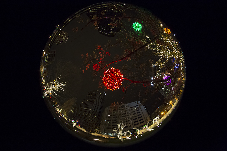 2012-12-14 Citygarden Fisheye 1