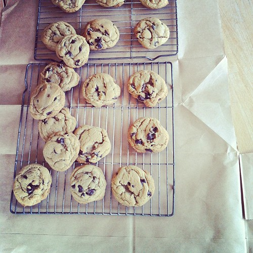 351 :: whole wheat chocolate chip cookies