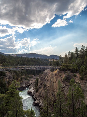 a footbridge over the yellowstone