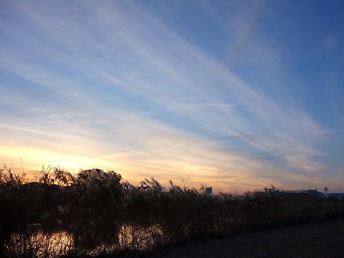 夕日と雲とススキ