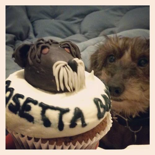 POsetta Baddog & Mollie Bakes