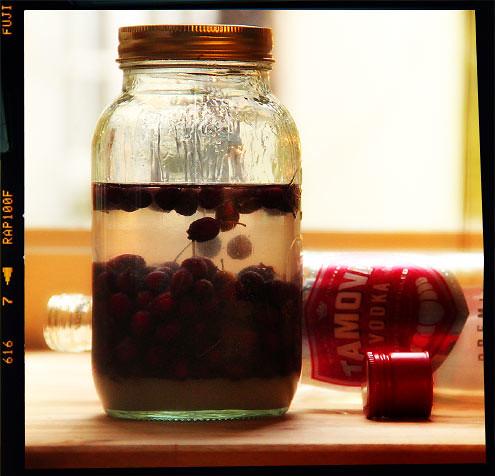 Hawthorn Liqueur