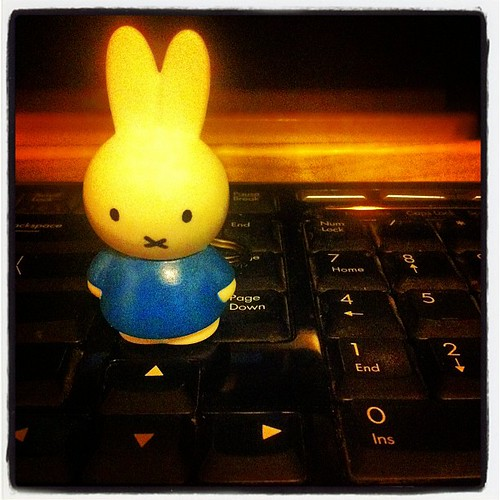 Miffy all keyed up.(