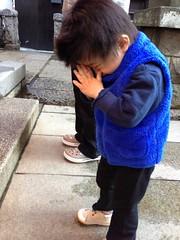 朝散歩 (2012/11/14)