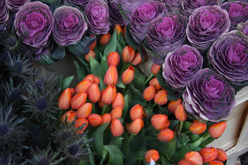 cabbages, tulips and thistles
