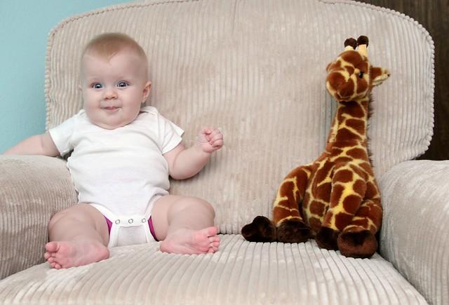 M vs giraffe week 24