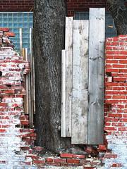 Boards, Bricks and a Tree