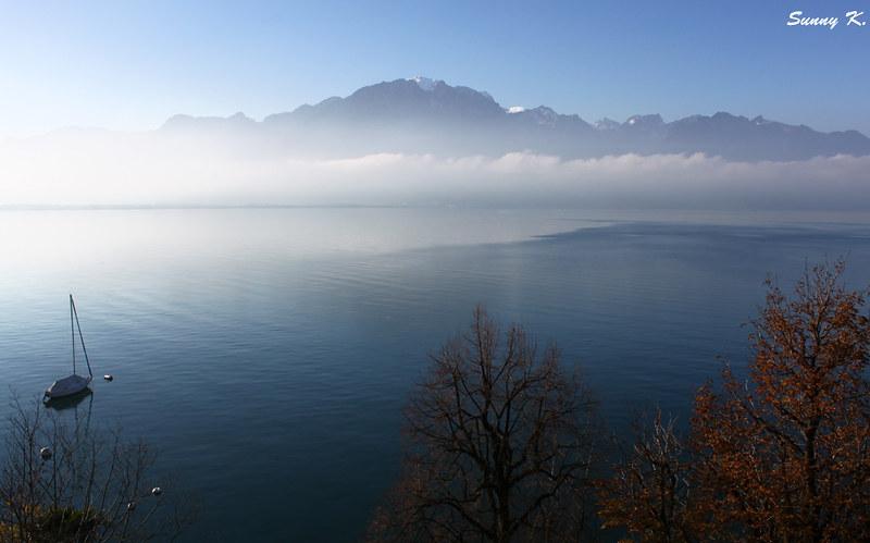 Misty Montreux 1