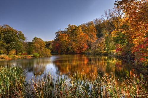 Autumn in Holmdel Park - New Jersey by Revup67