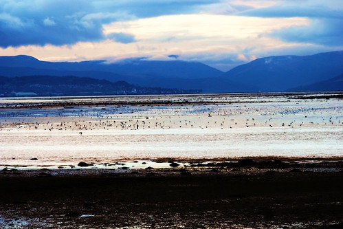Firth of Clyde at Low Tide