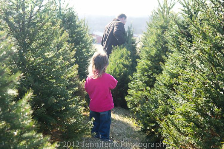 ChristmasTreeFarm12-7791.jpg
