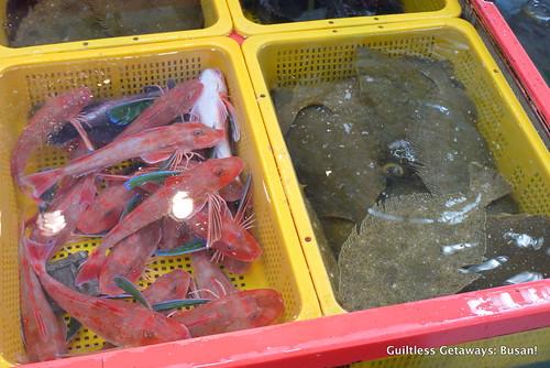 flounder-korea.jpg