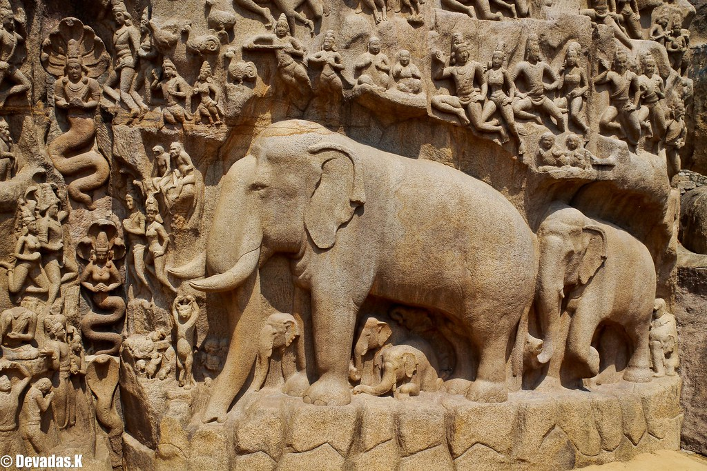 Elephant at mahabalipuram