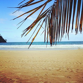 Find me here. I may never leave #Maracas #Beach #Trinidad