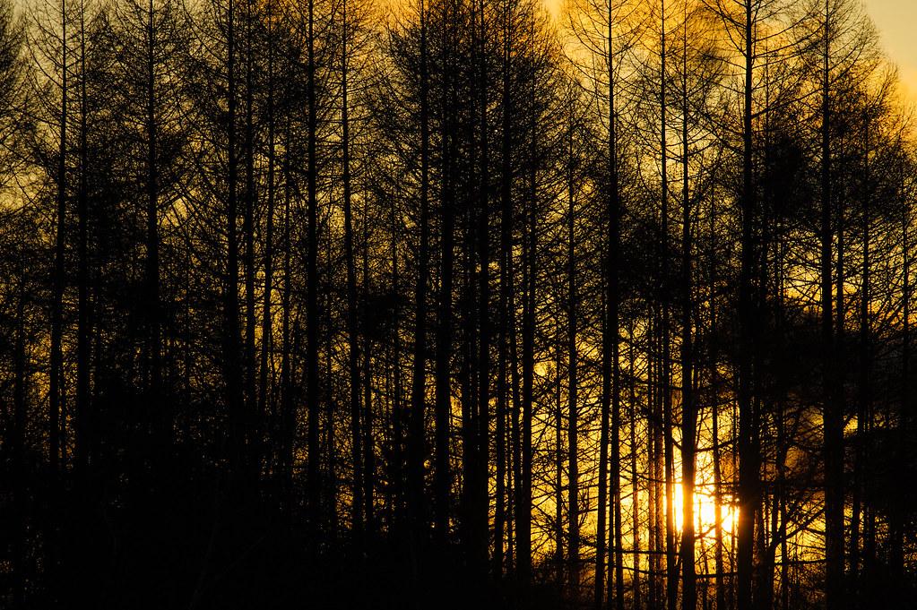 Sunset / 御射鹿池