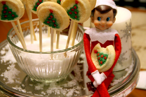 Closeup-Elfie-and-Cookie