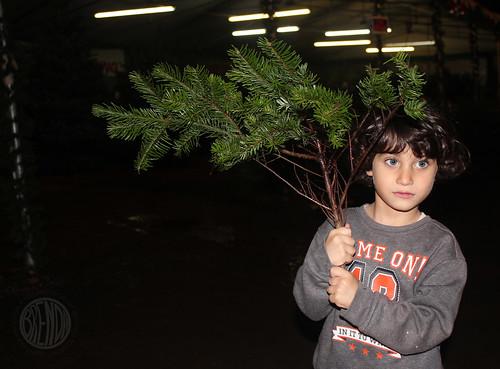 branch boy