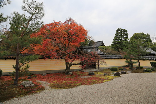 Autumn Touji-in 等持院
