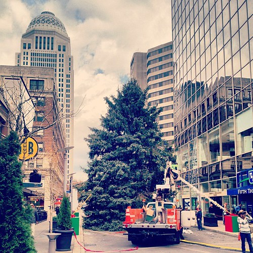 A four ton Christmas Tree. #louisville #christmastime