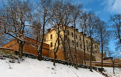 Špilberk castle in winter