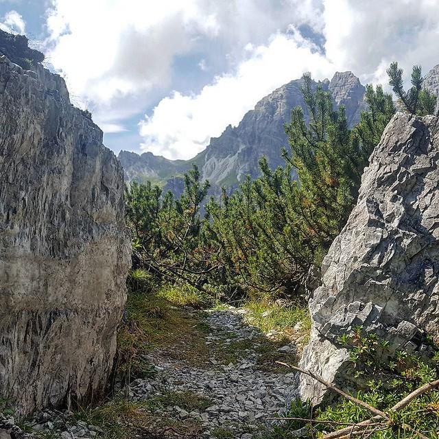 Photo:Lass uns unseren Steg suchen #tirol #tyrolia #stubaital #mountains #alps #alpen #berge #treehugger #austria #nature #motherearth #earthlover #everydayisearthday #treeporn #treelovers #treesofinstagram #treecollection #natureisbeautiful #nothingisordinary By Stefan_Moser