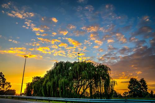 sunset surise johannesburg color colours hdr clouds street nikon trees outdoor sky cloud dusk serene skyline field landscape